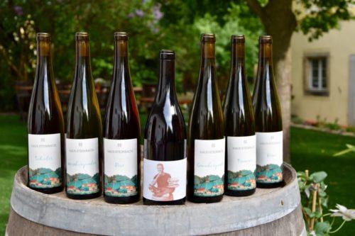 Weingut Haus Steinbach - Jahrgang 2019