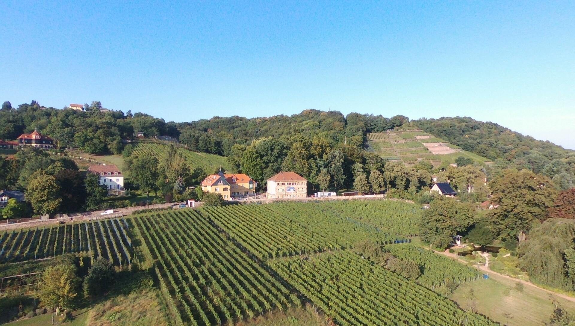 Weingut Haus Steinbach - Vogelperspektive